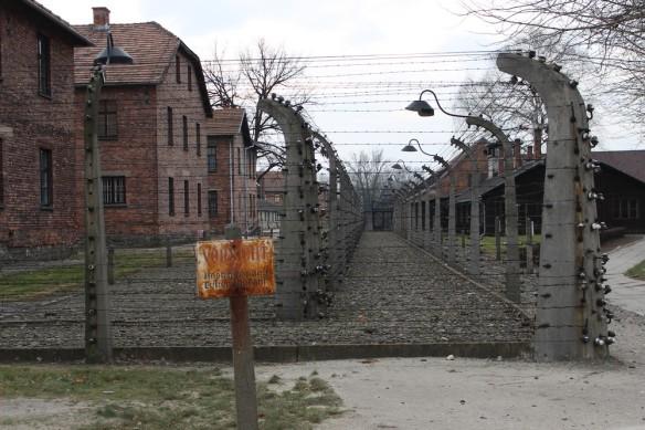 Auschwitz14